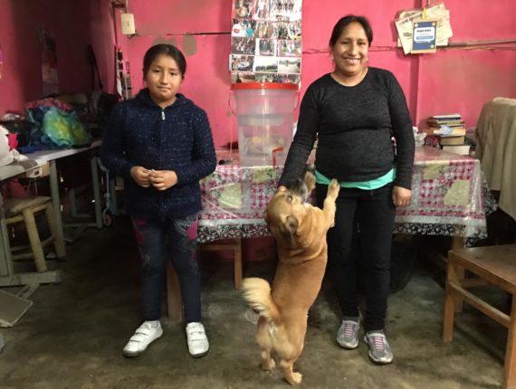 El proyecto se está llevando a cabo ya en Lima en su versión familiar en San Juan de Miraflores. Se espera obtener buenos resultados para seguir llevando agua limpia en mayor cantidad en diversas partes del mundo.