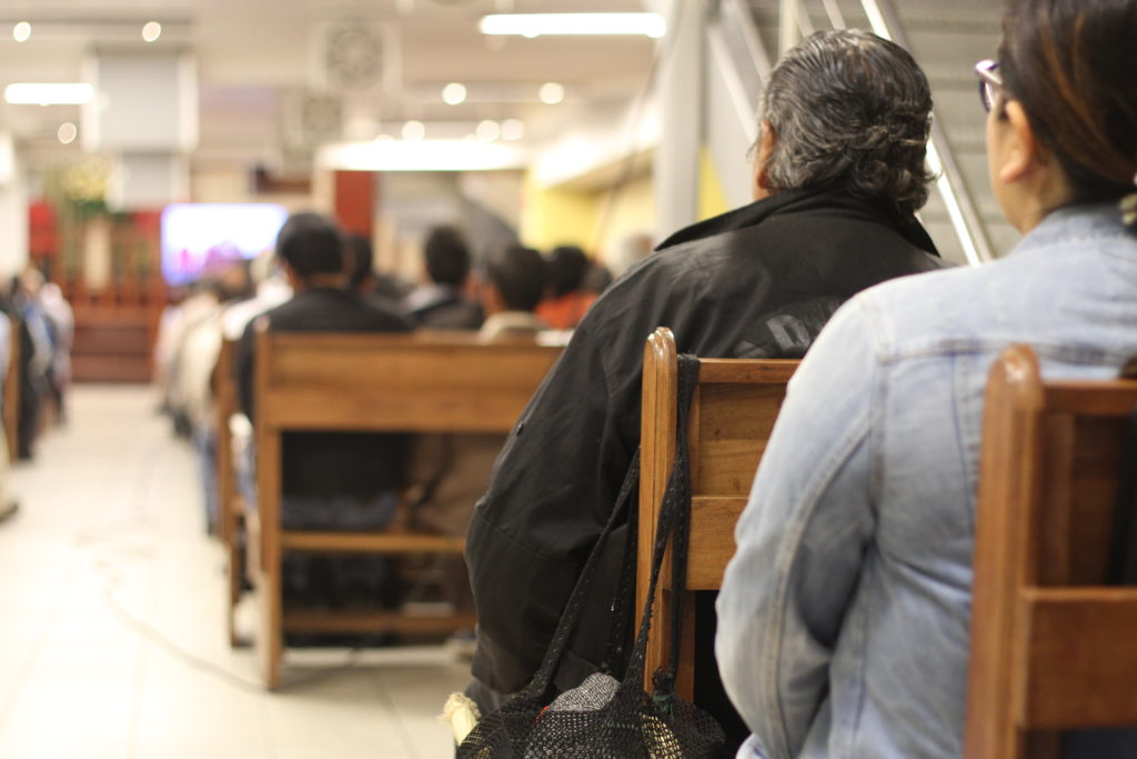 Lucuma en el Movimiento Mundial Misionero (Foto por Salvador Candia)