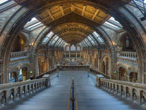 Hall de Museo de Historia Natural de Londres